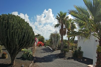 Fincas Lanzarote